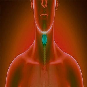 Endocrino Clínica Astarté